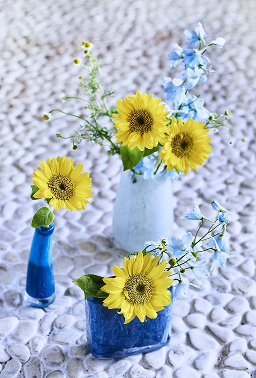 Sunflower×BLUE
