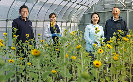 産地レポート ヤマキ花卉園(千葉県・館山市)